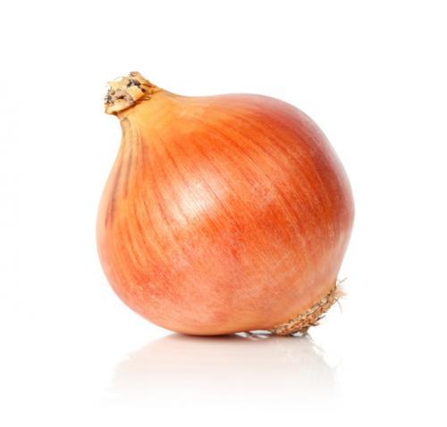Onion_edited