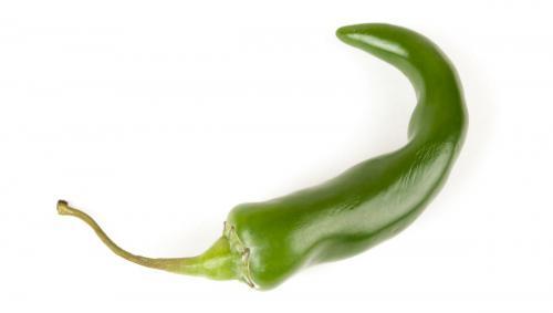 Green Chilli_06